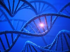 DNA Light Treatment